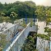 白萱池(愛知県常滑)