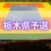 【蒼き復活ドッジ祭】ドッジボール全国大会栃木県予選