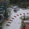 ミモザ・ガーデンの日記  雪になりました
