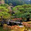 京都プチ旅  その1 ★伏見稲荷~下鴨神社★