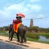 アイコン制作。(タイと象とアユタヤ)