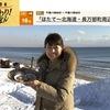 ホタテ 漁師さんの焼きホタテの焼き方「はじめ,平らな茶色の貝殻を下にして焼く.   貝が開いたら,ひっくり返して,膨らんだ白い方の貝殻を下にして更に焼く」.孫成順さん「干し貝柱は普通のホタテよりは,もっとうま味が強い.ただ,うまく戻さないと味が出て来ない」 NHK食材探検おかわりニッポン