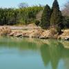 新々池(愛知県東浦)