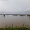 ぷらっと木曽川、大増水で公園水没。