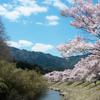 【合格体験記】大阪大学外国語学部英語専攻に合格した いちご さんの勉強法とは