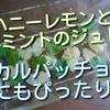 レモンのはちみつ漬けとミントジュレはカルパッチョにもぴったり!お薦めです。
