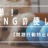 【問題行動防止】マルプーとKONG(コング)を使ったトレーニング
