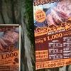 11回目の沖縄は2回目の一人旅①(那覇2泊3日)沖縄ゆいレール編。