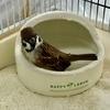 新調されたお風呂と「鳥さんの防災」