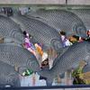 うずまの鯉2