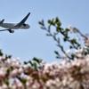 カンタス航空のマイルでJALの羽田ー韓国ソウル間の特典航空券を予約