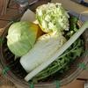 田舎で野菜をタダでもらえるという噂は本当だった(岐阜の実話)