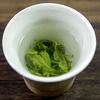 チャノキ(茶の木)の新芽を摘んで緑茶と紅茶を作ってみる