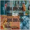 ソーシャルレンディング比較サイト【クラウドポート】が【ZUU funding】に変わりました!