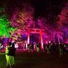 下鴨神社のチームラボのライトアップ2019。