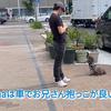 2021.7.22 【トリミングの迎え❗️】 Uno1ワンチャンネル宇野樹より
