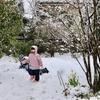 3月下旬の思わぬ雪