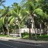 インドネシア旅行記【バリ編】 クタ Kuta 市街の様子その② クタ南部の大通りを歩いてみた