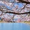 日本に帰りたい願望