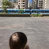 電車を見て喜ぶ息子&八百屋の猫ちゃん