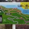 ゴールデンウィークは仙崎公園へ!つつじもあるしトレッキングもできる!