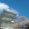 雨のサンサンマルシェありがとうございます、14日は浜松、17日は茅ヶ崎です