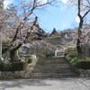 【行った】岐阜県関市 関善光寺の桜の見どころ、アクセス、駐車場情報なども