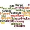 先行詞と関係代名詞の組み合わせの話