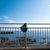 毎日一枚。「ちょっと散歩に。」おすすめ:☆☆☆ ~写真で届ける伊勢志摩観光~