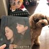 『韓国ドラマの写真集は経費になりません(*ノωノ)』顧問料は高め?安め?
