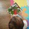 絵本の読み聞かせをたくさんやったから、子供が読書を好きになるわけではない【我が家の課題】