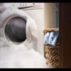 洗濯機をダメにしてしまう5つの間違い