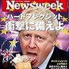 Newsweek (ニューズウィーク日本版) 2019年08月06日号 ハードブレグジット 衝撃に備えよ