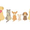 認知症の人を犬がサポートすると言う試み(オーストラリア)