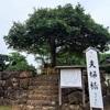 縁結びの神様「八重垣神社」は珍(チン)でした♪