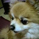 Mitsuhikoのブログ