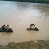 ラオスのルアンパバーンで象使いになってみたよ