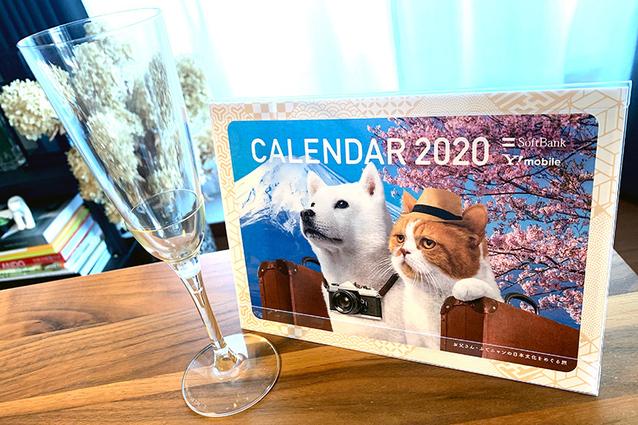 2020年のカレンダーは地球に優しい! 世界で注目の素材「ポリ乳酸」って知っていますか?