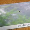 ココアルのフォトブックで、趣味の写真集を作りました