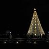 アメリカで最も有名なクリスマスツリー「ナショナルクリスマスツリー」