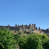 【番外編8】Carcassonne〜フランス中世の古城と南仏のフレンチ料理