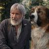 映画「野性の呼び声」ネタバレあり感想解説と評価 数字を取るのは犬とラーメン