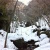【棒ノ折山】2014年3月8日  見たことのない豪雪の棒ノ折山へ!(日帰り登山)(3回目)