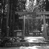 【近江國】高嶋郡・大川神社。