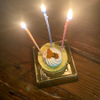 柴犬ももちゃん3歳の誕生日をお祝いする!犬の誕生日には何をする?