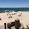 One & Only Palmilla(ワン&オンリーパルミラ)宿泊/鯨が潮を吹いた! 生きている鯨を初めて見たよ!【ロスカボス紀行8】