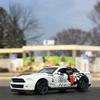 '10 Ford Shelby GT500に乗って、癒しの動物達に逢いに。茶臼山動物園