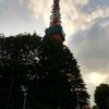 久しぶりの東京で人生初の東京タワーを見てきました