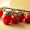 とまと、トマト
