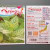 ペパーミントの種蒔き